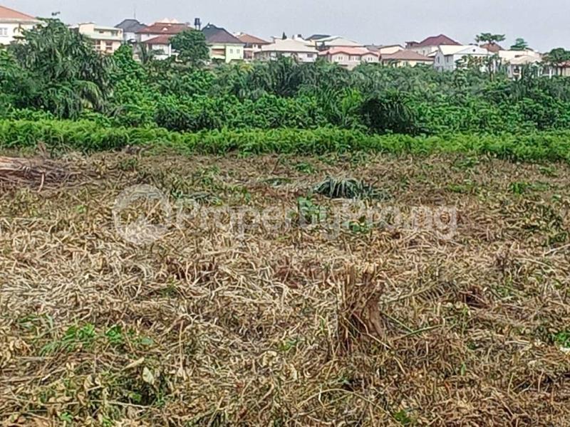 Residential Land Land for sale Magodo Central/magodo Phase 2 Extension, Magodo, Lagos. Magodo GRA Phase 2 Kosofe/Ikosi Lagos - 5