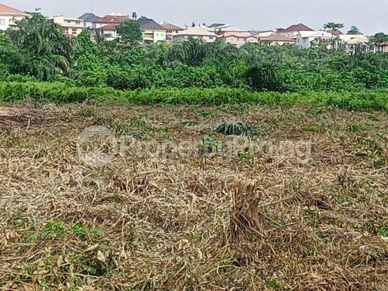 Residential Land Land for sale Magodo Central/magodo Phase 2 Extension, Magodo, Lagos. Magodo GRA Phase 2 Kosofe/Ikosi Lagos - 7