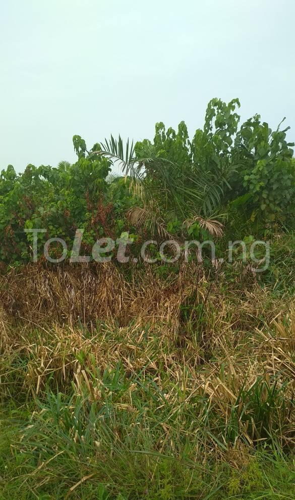 Land for sale Roseberry Estate Ibeju Lekki Ibeju-Lekki Lagos - 4