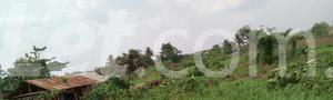 Mixed   Use Land Land for sale Ise/Orun Ise/Orun Ekiti - 3