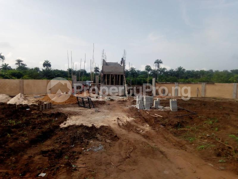 Mixed   Use Land Land for sale 10 Mins Drive From Sam Mbakwe Airport Owerri Imo - 7