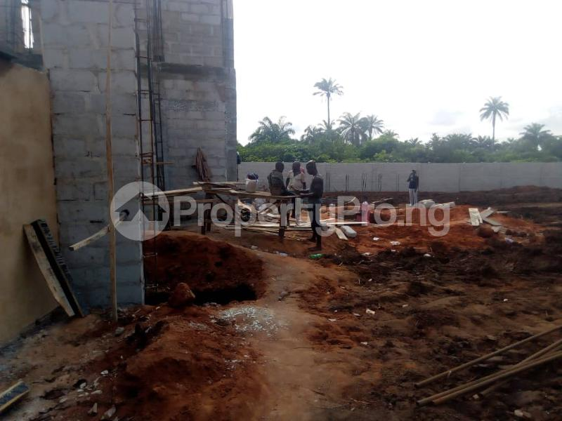 Mixed   Use Land Land for sale 10 Mins Drive From Sam Mbakwe Airport Owerri Imo - 9