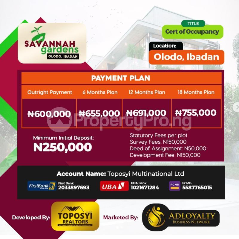 Residential Land Land for sale Olodo Oyo Oyo - 1