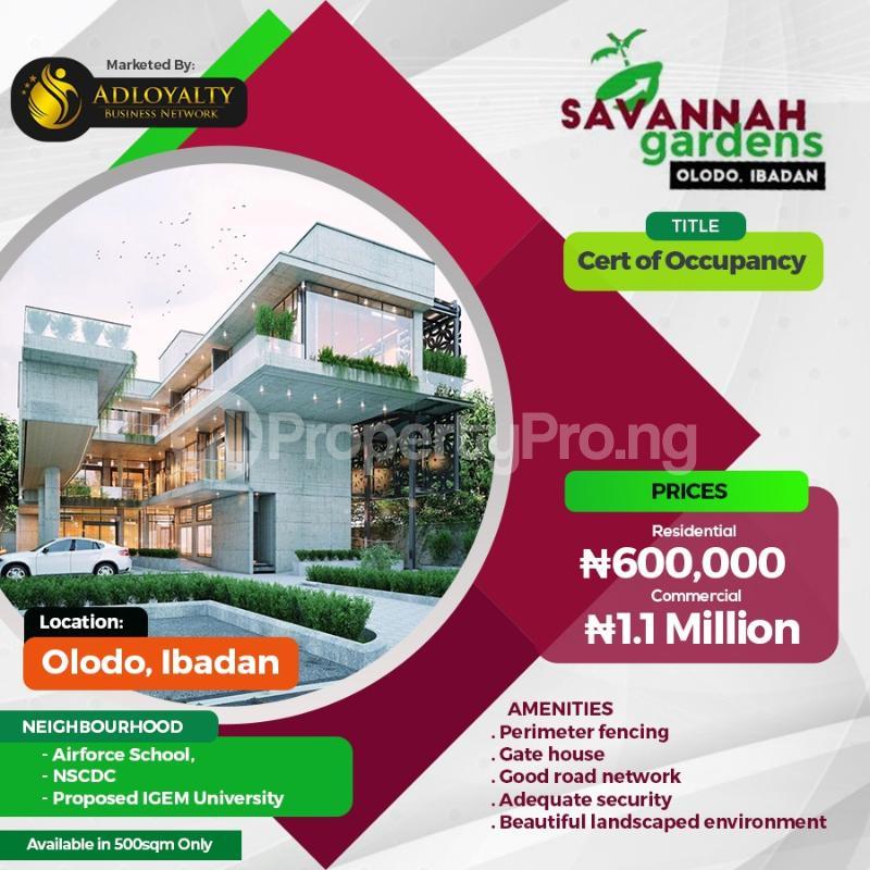 Residential Land Land for sale Olodo Oyo Oyo - 0