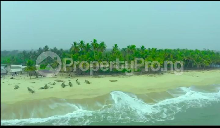Land for sale Okun Mosan Free Trade Zone Free Trade Zone Ibeju-Lekki Lagos - 1