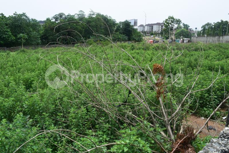 5 bedroom Residential Land for sale Katampe Main Abuja - 0
