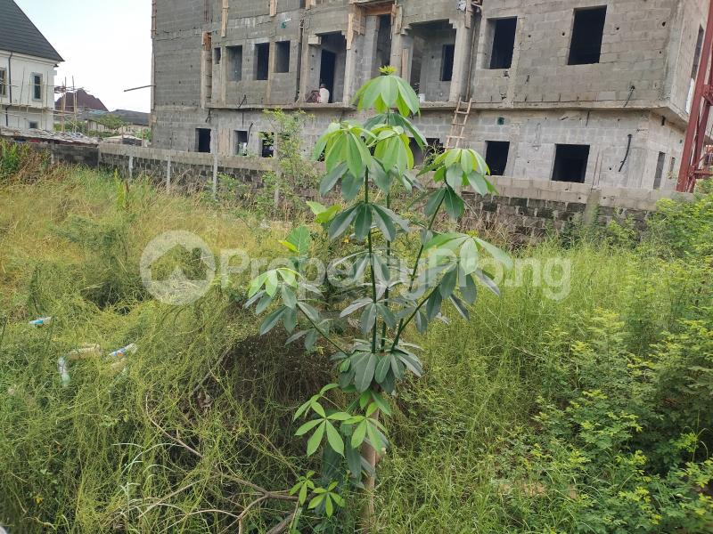 Residential Land for sale Lakeview Estate, Amuwo Odofin Amuwo Odofin Amuwo Odofin Lagos - 4