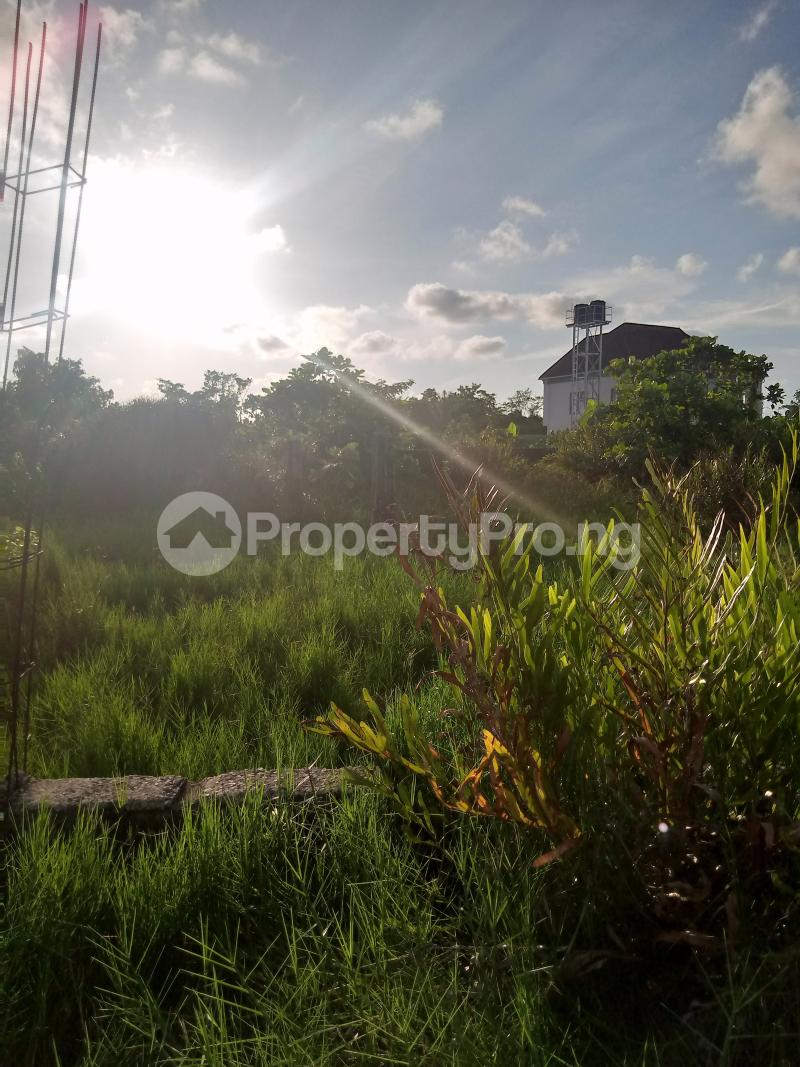 Serviced Residential Land for sale Thomas Estate Ado Ajah Lagos - 0