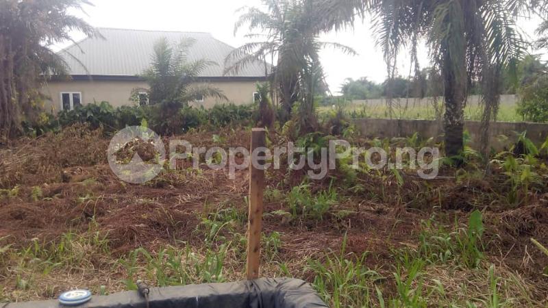 Residential Land Land for sale Akesan Igando Ikotun/Igando Lagos - 0