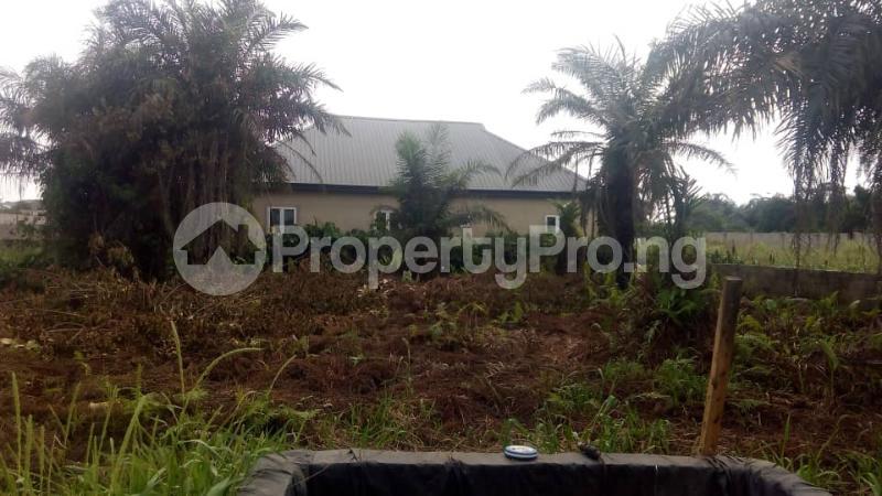 Residential Land Land for sale Akesan Igando Ikotun/Igando Lagos - 2