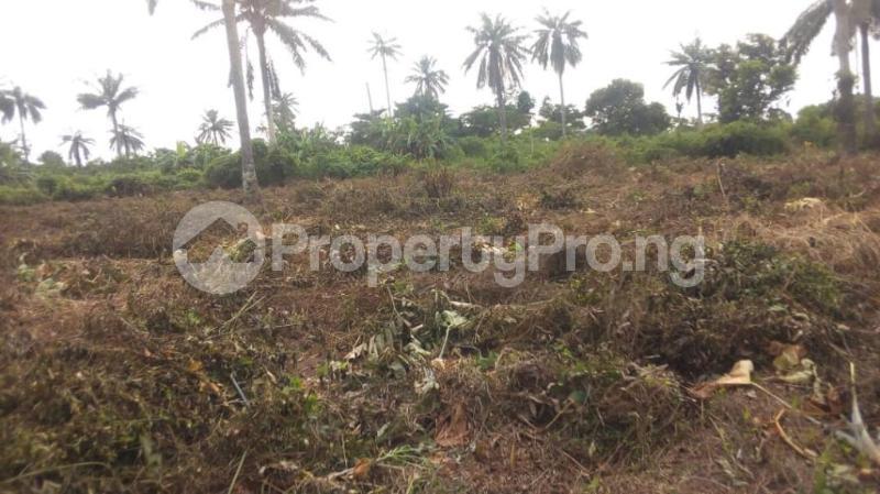 Land for sale Badeku egbeda , Iwo road Iwo Rd Ibadan Oyo - 0