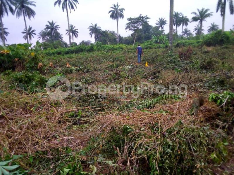 Land for sale Badeku egbeda , Iwo road Iwo Rd Ibadan Oyo - 2