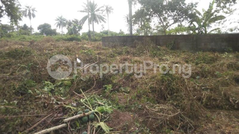 Land for sale Badeku egbeda , Iwo road Iwo Rd Ibadan Oyo - 3