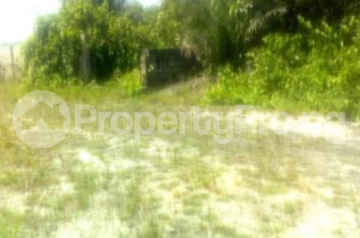 Mixed   Use Land for sale Ogombo Ajah Lagos - 0