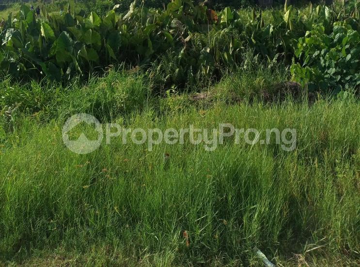 Residential Land for sale Serene And Secure Developing Estate Off Shoprite Sangotedo Shoprite Off Monastery Lekki Sangotedo Ajah Lagos - 0