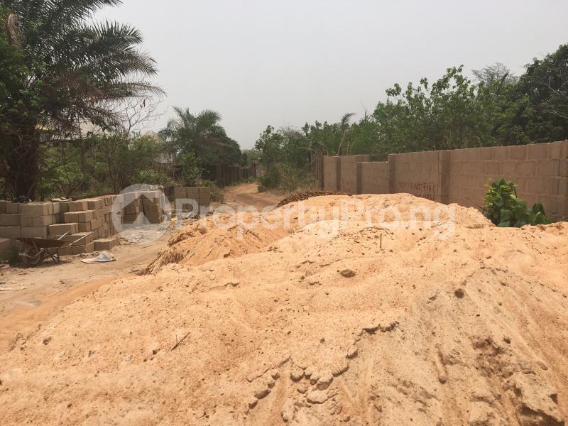 Residential Land Land for sale Off Umuchigbo Major Road Towards Nike Lake Resort Enugu Enugu - 2