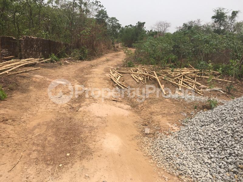 Residential Land Land for sale Off Umuchigbo Major Road Towards Nike Lake Resort Enugu Enugu - 3
