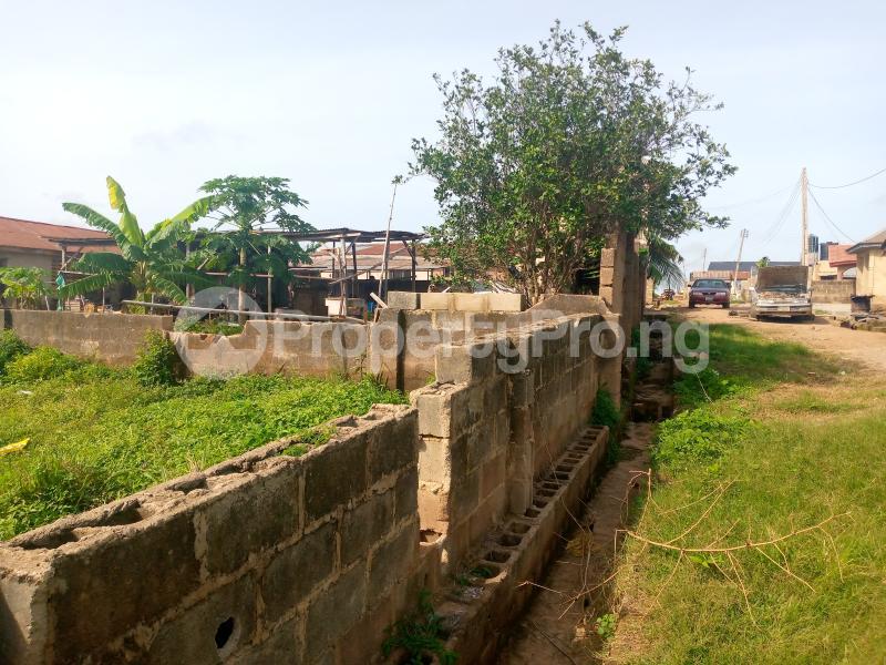 Residential Land for sale Lane 2, Zone D, Kasumu Estate Off Akala Express Akala Express Ibadan Oyo - 6