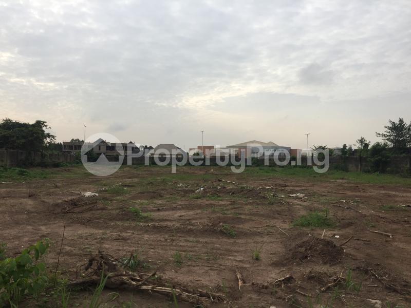 Commercial Land for sale Marriam Babangida Asaba Delta - 2