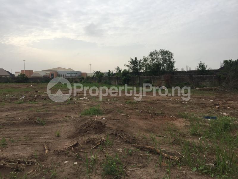 Commercial Land for sale Marriam Babangida Asaba Delta - 1