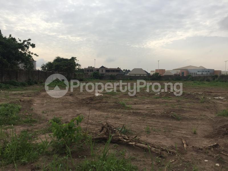 Commercial Land for sale Marriam Babangida Asaba Delta - 0