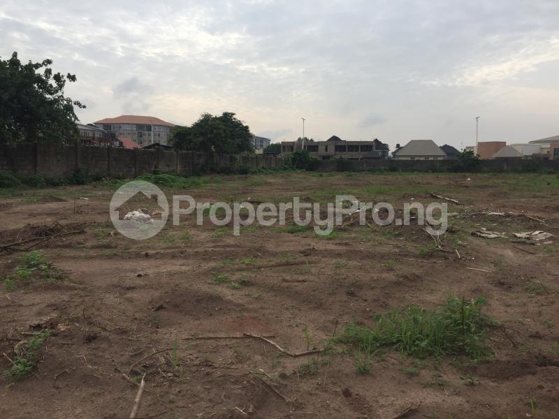 Commercial Land for sale Marriam Babangida Asaba Delta - 4