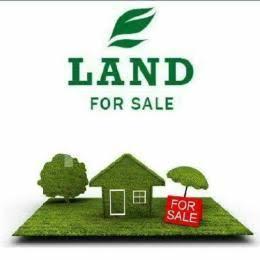Mixed   Use Land Land for sale Ikola Odunsi Ipaja Ipaja Lagos - 0