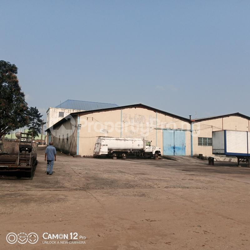 10 bedroom Warehouse for rent Trans Amadi Industrial Area Trans Amadi Port Harcourt Rivers - 3