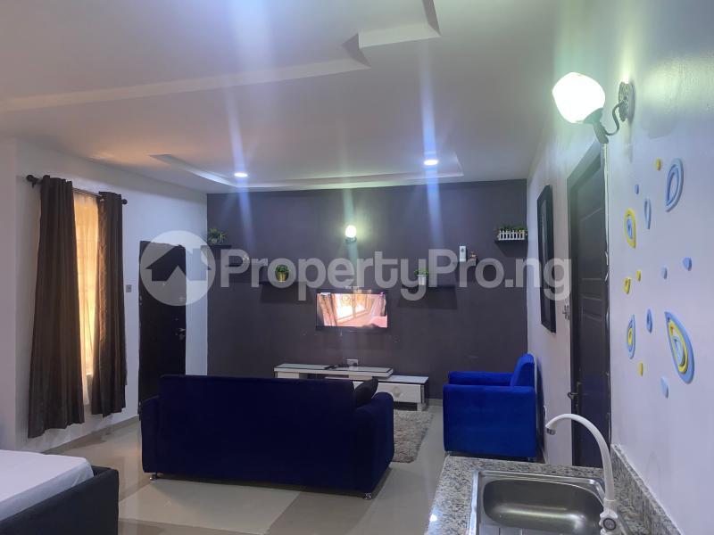 1 bedroom mini flat  Self Contain Flat / Apartment for shortlet 30 Chevron Alternative Route chevron Lekki Lagos - 3