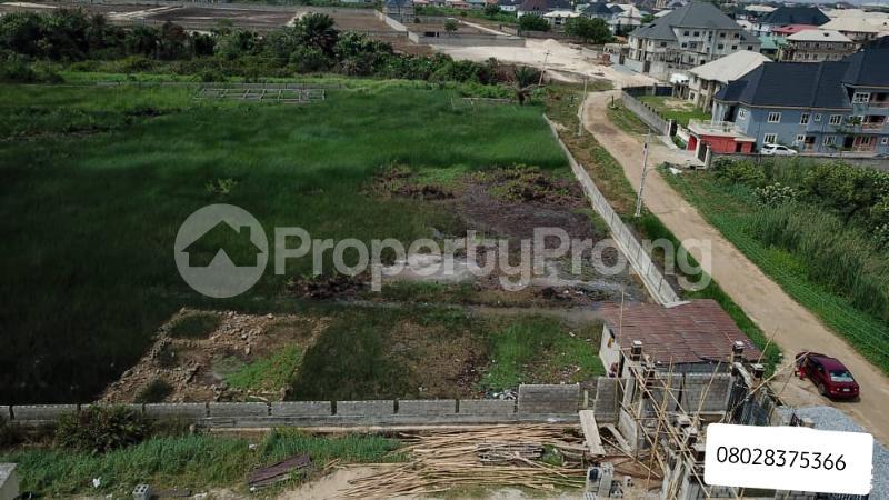 Residential Land Land for sale Festac satellite town Amuwo odofin Festac Amuwo Odofin Lagos - 1
