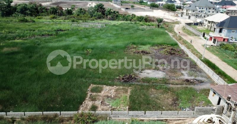 Residential Land Land for sale Festac satellite town Amuwo odofin Festac Amuwo Odofin Lagos - 4