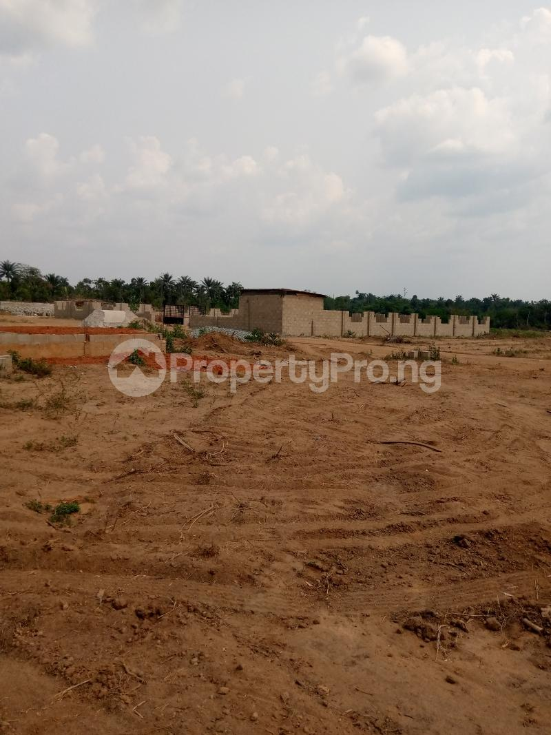 Residential Land for sale Along Ondo Road After Best Solution Polytechnic Akure Ondo - 3