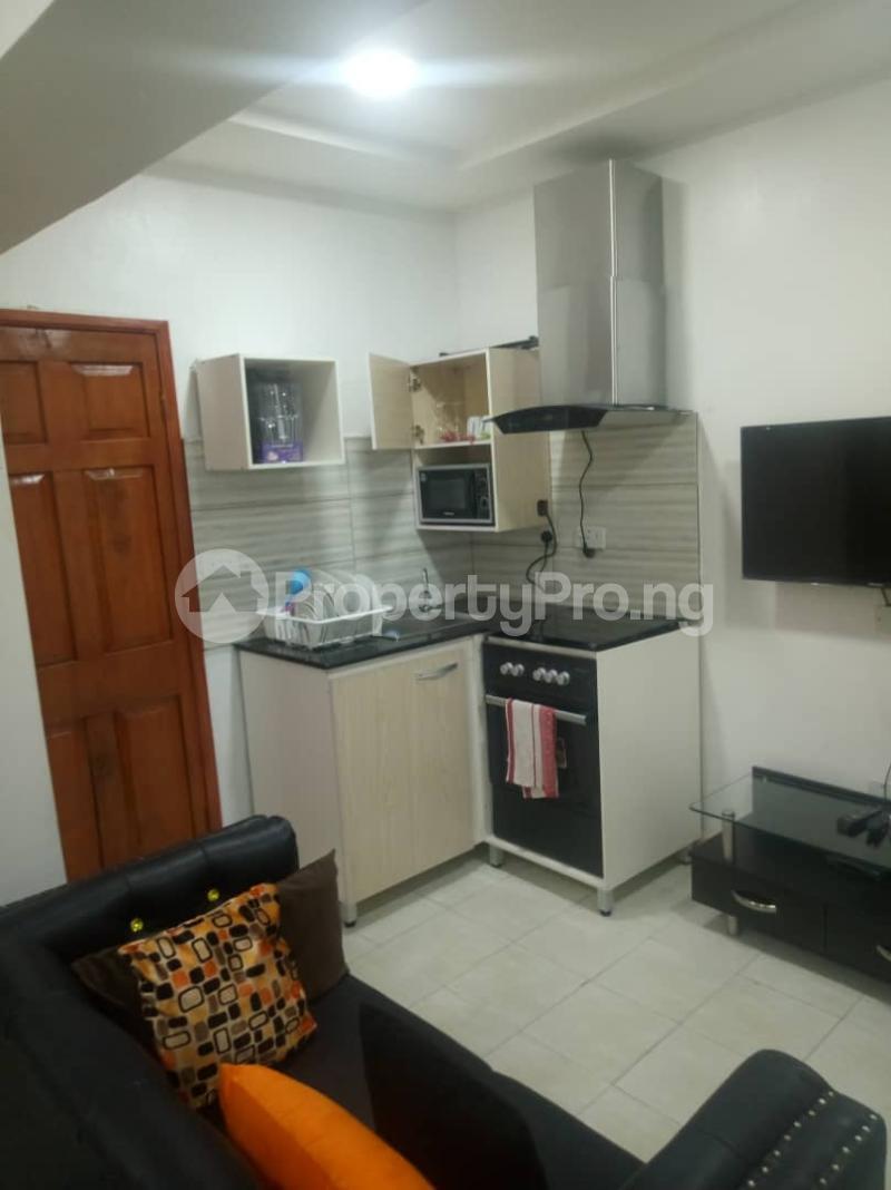 1 bedroom mini flat  Studio Apartment Flat / Apartment for shortlet Lekki phase 1 Lekki Phase 1 Lekki Lagos - 5