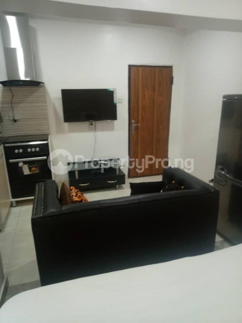 1 bedroom mini flat  Studio Apartment Flat / Apartment for shortlet Lekki phase 1 Lekki Phase 1 Lekki Lagos - 12