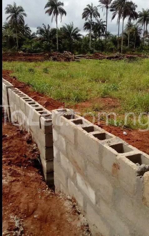 Land for sale Along Aba Owerri Road In Ngo Okpala Community,owerri Nortn Lga Ngor-Okpala Imo - 1