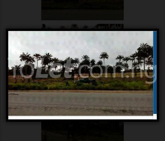 Land for sale Along Aba Owerri Road In Ngo Okpala Community,owerri Nortn Lga Ngor-Okpala Imo - 2