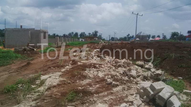 Land for sale Ngor Akpala Ngor-Okpala Imo - 2