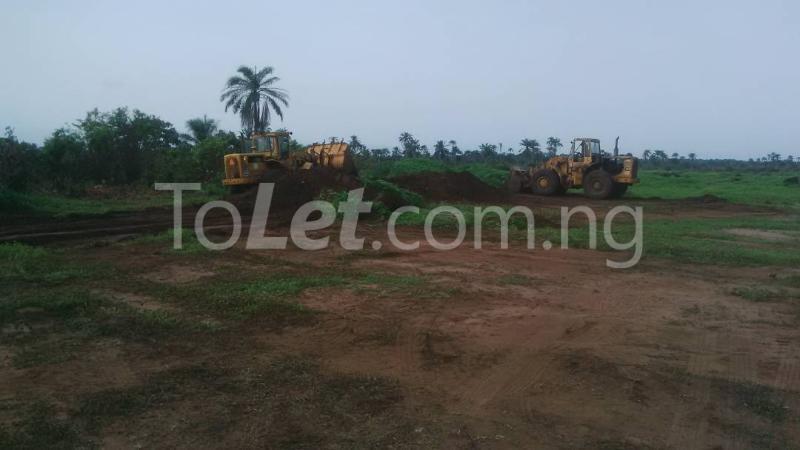 Land for sale Ngor Akpala Ngor-Okpala Imo - 3