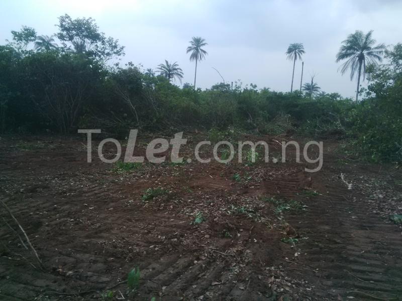 Land for sale Ngor Akpala Ngor-Okpala Imo - 1