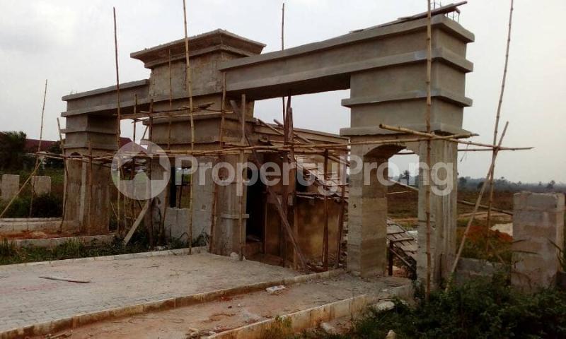 Residential Land Land for sale Avu-Oforola Off Portharcourt Road Owerri IMO State  Owerri Imo - 4