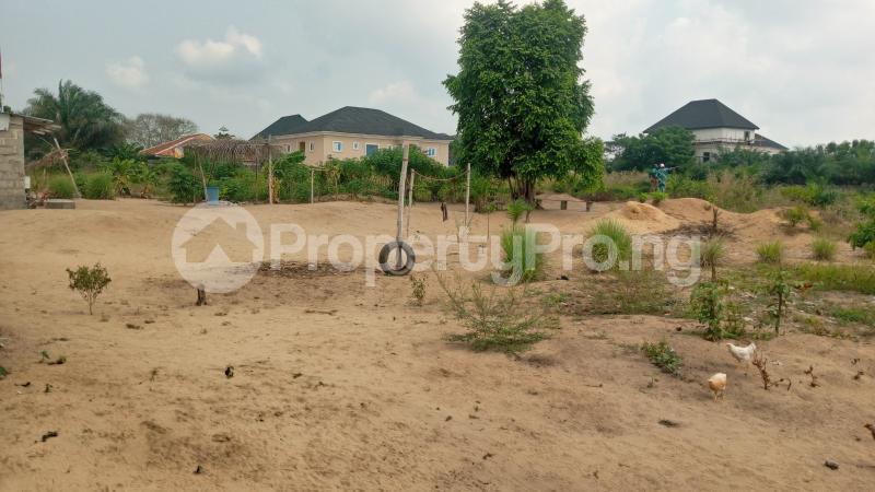 Mixed   Use Land Land for sale Ogunfayo Estate Eputu Ibeju-Lekki Lagos - 1
