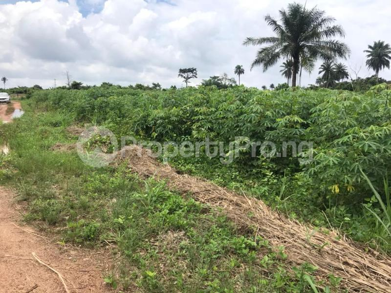 Residential Land for sale Igboonla Epe Epe Lagos - 1