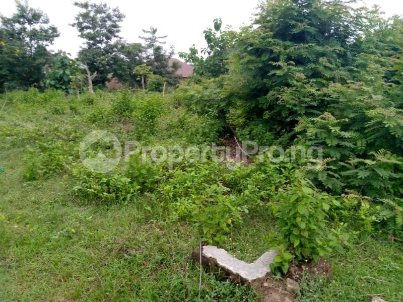 Residential Land for sale Agbale Area Ede North Osun - 5