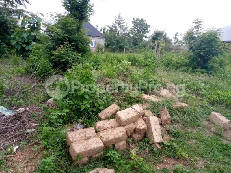 Residential Land for sale Agbale Area Ede North Osun - 7