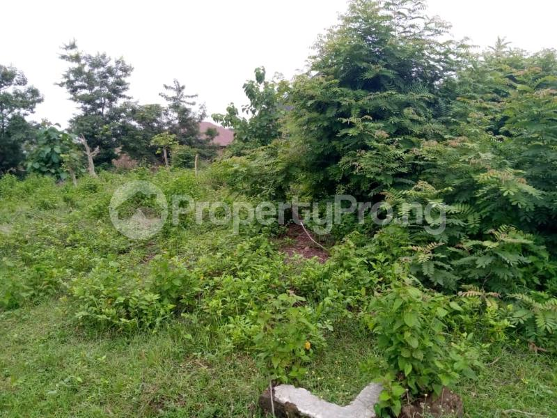 Residential Land for sale Agbale Area Ede North Osun - 3