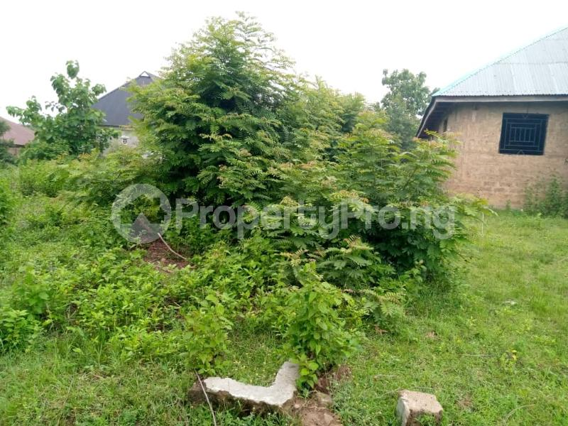 Residential Land for sale Agbale Area Ede North Osun - 6