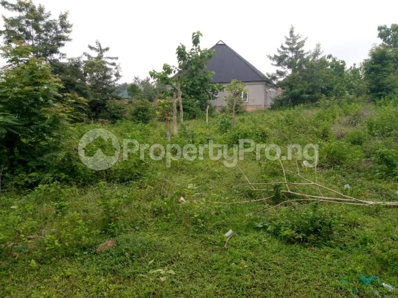 Residential Land for sale Agbale Area Ede North Osun - 4