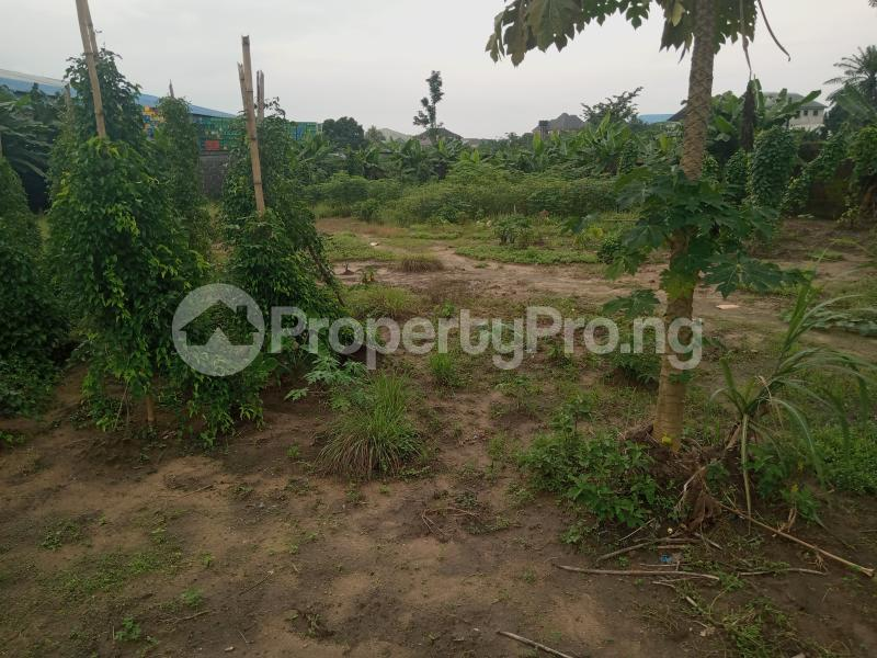 Mixed   Use Land Land for sale Iwofe Road Wimpy Port Harcourt Rivers - 2