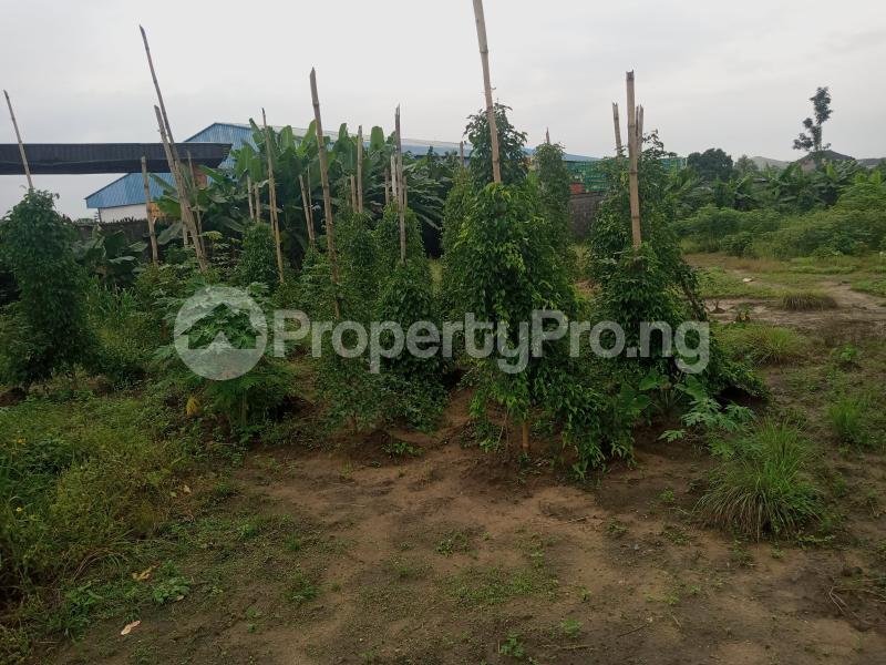 Mixed   Use Land Land for sale Iwofe Road Wimpy Port Harcourt Rivers - 1