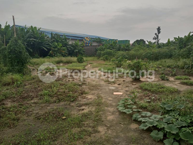 Mixed   Use Land Land for sale Iwofe Road Wimpy Port Harcourt Rivers - 3